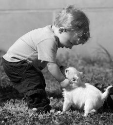 funny kids with animals021_.JPG