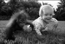 funny kids with animals031_.jpg